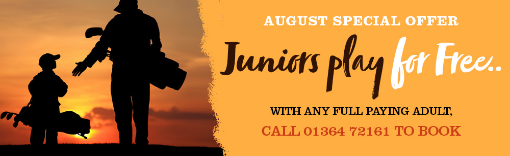 juniors-play-free-banner