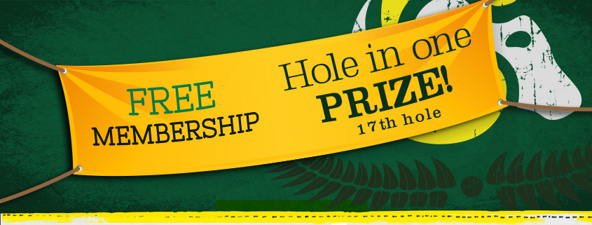 hole-in-one-banner